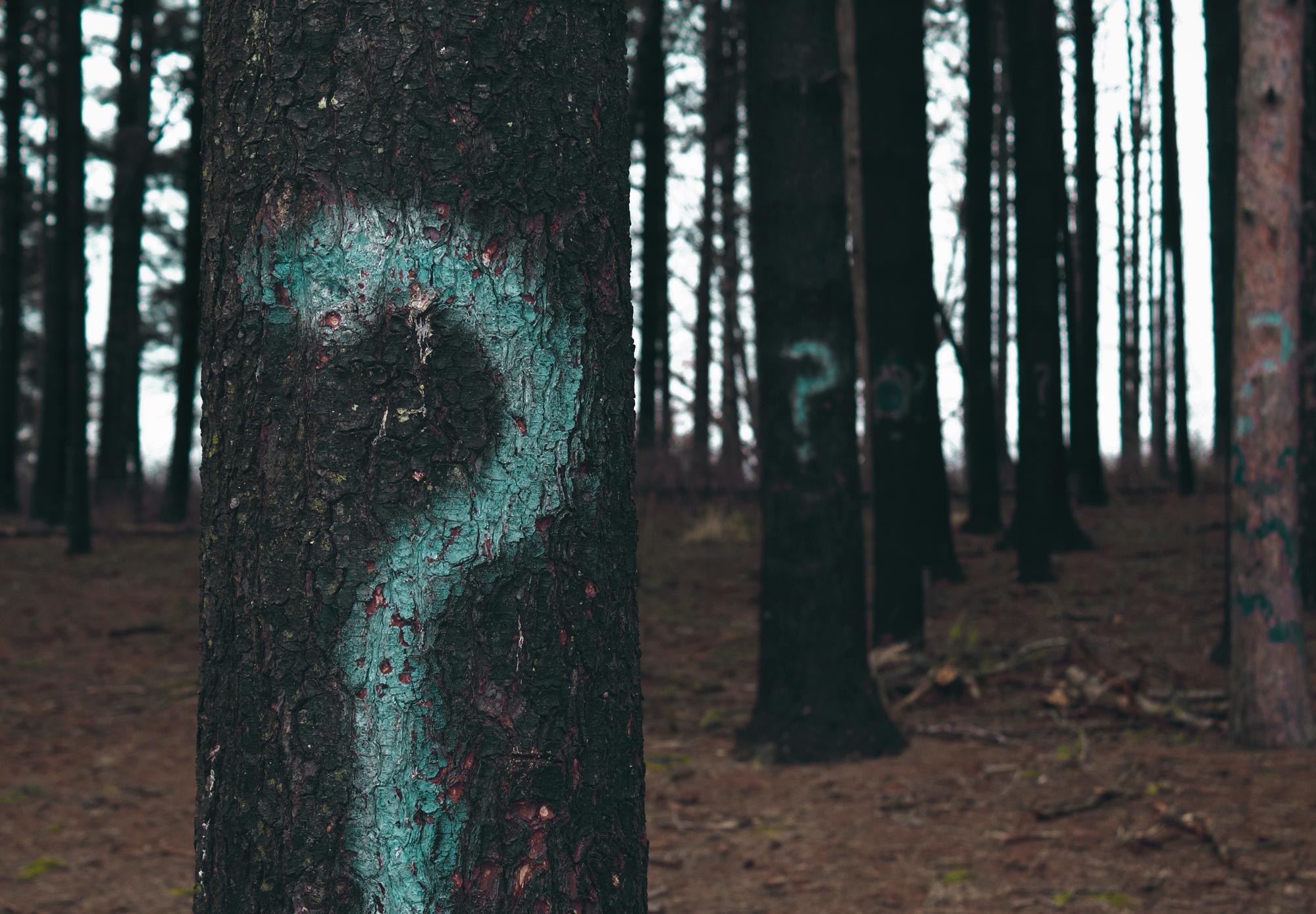 Защо Бог задава въпроси?