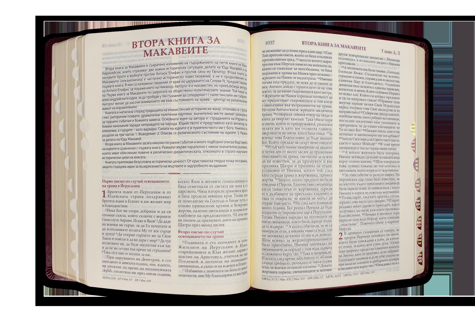 Библия (луксозна с кутия)